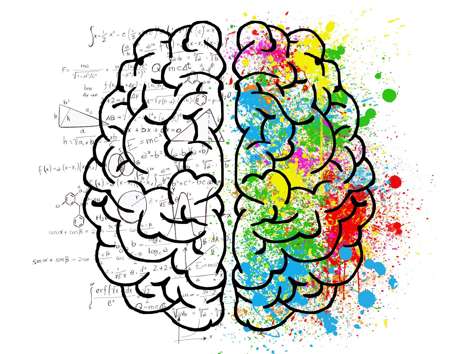 hersenen, reflexintegratie, hersenbalk, hersensamenwerking